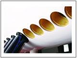 Thermosyphonのガラス管の太陽給湯装置