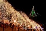 Luz de la secuencia del árbol del LED para la decoración del paisaje