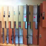 多彩なHPLの光沢度の高い積層の個々のロッカー