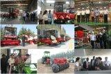 4WD 50HP de vervaardiging van de Landbouwtrekker van het Landbouwbedrijf met Ce voor Oost-Europa