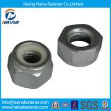 스테인리스 Steel 304/316 Hex Nuts 또는 Carbon Steel Zinc Plated Hex Nuts/Black Kex Nuts/Square Nuts/Nyloc Hex Nuts