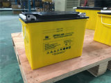 Niedrige Pflege-tiefe Schleife-überschwemmte geöffnete Solarröhrenbatterie 12V 100ah