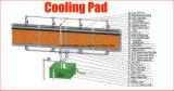 Aluminiumprofil-Rahmen für Gewächshaus-Verdampfungskühlung-Auflage