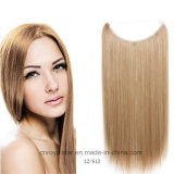 Hair Shade Straight Hair Weft Extension의 New Line