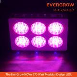 2016完全なスペクトルの新星S6のマグナムびんLEDはライトを育てる