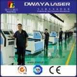 Laser Cutting Machine di Zs 6020 2000W Rofin Imported