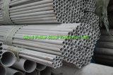 Grade 202의 대직경 Stainless Steel Seamless Pipe