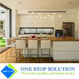 Mobília elevada popular dos gabinetes de cozinha do revestimento da laca do lustro (ZY 1038)