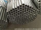 Tubulação de aço galvanizada de MERGULHO quente para o borne da cerca