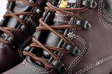 Ботинки безопасности Midsole стального пальца ноги стальные (M-8026)