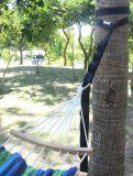 Porte la courroie s'arrêtante s'arrêtante d'oscillation de nécessaire d'oscillation d'arbre