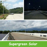 30W LED ha integrato tutti in un indicatore luminoso di via solare