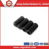 Gr12.9 Tornillos de fijación con punta negra DIN916