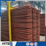 Surriscaldatore senza giunte del vapore dello scambiatore di calore dell'acciaio inossidabile per la caldaia industriale
