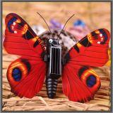 Солнечная сила ягнится бабочка 022A-4 насекомого игрушки подарка интеллектуальная DIY солнечная