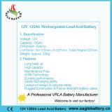 batterie de SLA de longue vie de 12V 120ah SMF VRLA pour solaire