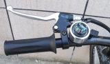 180W-250W 36V 세륨 리튬 건전지 산 전기 자전거 (TDE-003)