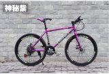 Bicicleta MTB do ciclo da bicicleta montanha da alta qualidade 24 de ''