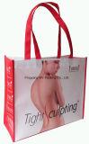 Самая лучшая продавая хозяйственная сумка слоения новых продуктов Nonwoven