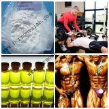 Muestra Libre 99% Pureza Crecimiento Muscular Esteróides Anabólicos Primas Testosterona Cipionato