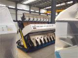 Automatischer Grad-weiße weiße Bohnen CCD-Farbe, die Maschine trennt