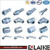 Customed High Pressure Hydraulic Fittings et Hose