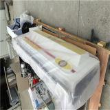 Dericen 차를 위한 이동할 수 있는 증기 차 세탁기