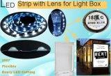 LED-Lampen-Streifen mit Objektiv