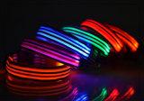 Colar clássico do diodo emissor de luz do cão dos produtos do animal de estimação do diodo emissor de luz