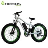 يزوّد [مودل فكتوري] علبيّة جديدة اثنان عجلة درّاجة كهربائيّة