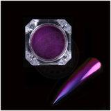 Colorants magiques de modèle d'art de clou de changement de vitesse de caméléon d'effet de chrome de couleur