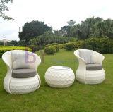 Muebles al aire libre del hogar de la rota del PE del ocio del hotel del jardín del nuevo estilo
