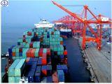 Consolidar o transporte do oceano, consolidá-lo, FCL, LCL de China a no mundo inteiro