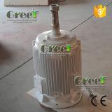 1-50kw baixo - gerador de ímã permanente da velocidade para a turbina de vento
