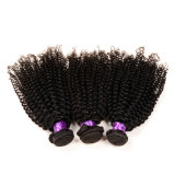 100% virgem indiana Afro Kinky Curly Hair Hot Sale Afro Kinky Hair Weaving Grade 7A Afro Kinky Human Hair