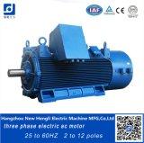 Motor de C.A. eficiente elevado de 160kw 25Hz 4pole 750rpm
