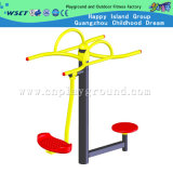 Waist Exercise Outdoor Fitness Equipment (HD-12402C)のための屋外のFitness