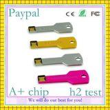 주문 로고 Paypal 지불 키 USB (GC-K001)