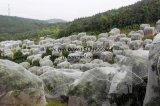 Réseaux 100% d'insecte d'agriculture de HDPE anti