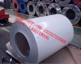 La bobina de acero galvanizada prepintada sumergida caliente/prepintó la tira galvanizada del acero Strip/PPGI