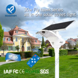 Réverbère actionné solaire direct de jardin de l'usine DEL avec le panneau solaire