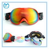 Lunettes polarisées photochromiques faites sur commande de lunetterie de sports pour le ski