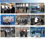 Chaîne de production de machines de nourriture de poissons