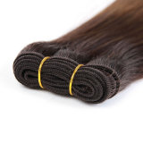 Pelo humano sin procesar de la Virgen de Ombre del pelo de 1 manojo del reparto de pelo recto de los productos 7A de la Virgen malasia recta malasia del grado