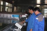 17.6%-18.6%高いEfficiency MonocrystallineかPolycrystalline Solar Module