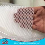 China-Fabrik HDPE Plastikmaschendraht