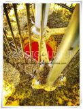 새로운 기술 녹색 태양 농업 해충 통제 살인자 램프