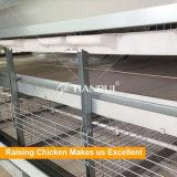 Van het het gevogeltelandbouwbedrijf van de grill het huisontwerp/de apparatuur van het grillgevogelte voor grill