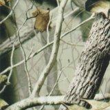 Kingtop 1m Film Wdf12990&#160 van het Af:drukken van de Overdracht van de Film van het Ontwerp van de Camouflage van de Breedte Hydro Onderdompelende;