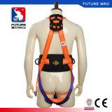 Norme de la CE 5 points de harnais de sûreté avec la doubles lanière de sangle et amortisseur